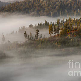 Idaho Scenic Images Linda Lantzy - Autumn Mists