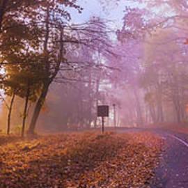 Rima Biswas - Autumn morning