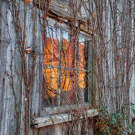 John Vose - Autumn Reflections