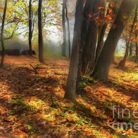 Dan Carmichael - Autumn Shadows in the Blue Ridge AP