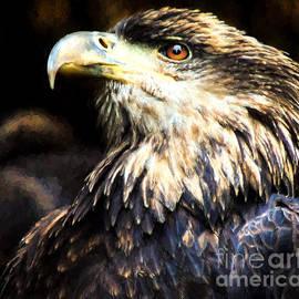 Mim White - Bald Eagle