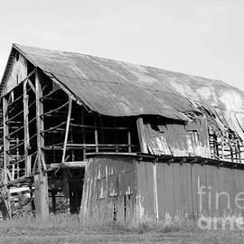Dwight Cook - Barn in Kentucky no 75