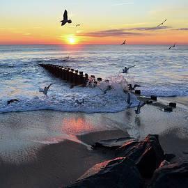 Bob Cuthbert - Bay Head Sunrise