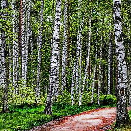 Alexey Bazhan - Birch Grove