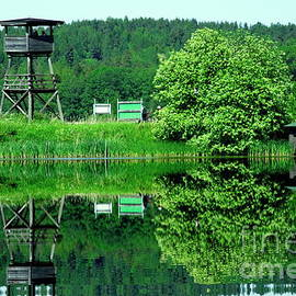Esko Lindell - Bird watching tower