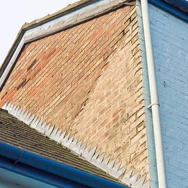 Blue house - Tom Gowanlock