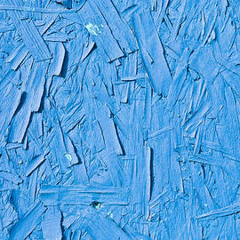 Blue plywood - Tom Gowanlock