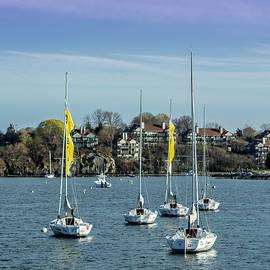 Jerri Moon Cantone - Boats in Newport