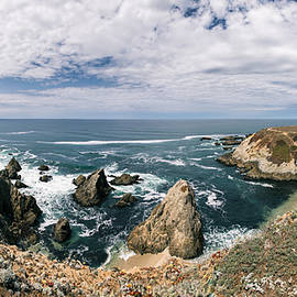 Lee Harland - Bodega Head