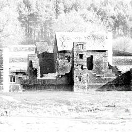 Linsey Williams - Bradgate House Ruins