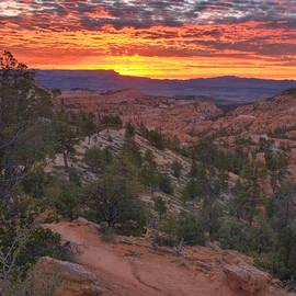 Stephen  Vecchiotti - Bryce Canyon Sunrise