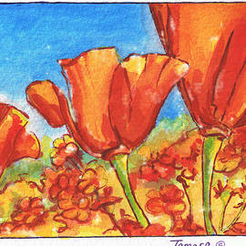 Tamara Kulish - California Poppy 1