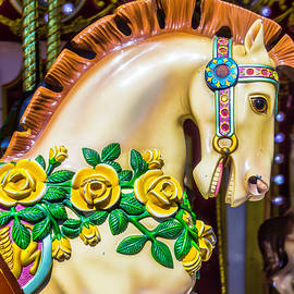 Carrousel Horse Portrait - Garry Gay