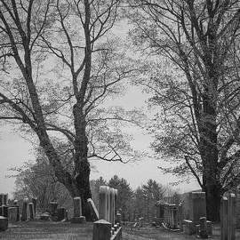 Alana Ranney - Cemetery