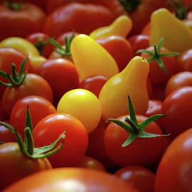 Cherry Tomatoes - Carlos Caetano