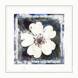 Debbie Portwood - Cinquefoil Wildflower Digital Paint 4