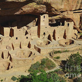 Debby Pueschel - Cliff Palace Mesa Verde