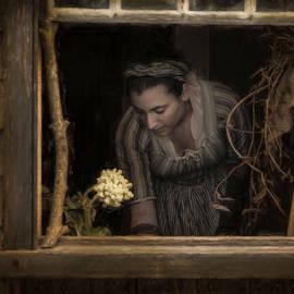 Robin-lee Vieira - An Open Window