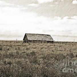 Scott Pellegrin - Colorado Barn