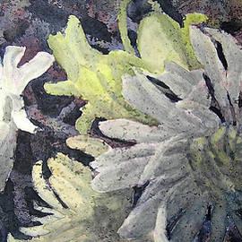 Carolyn Rosenberger - Deepening Shadows
