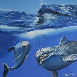 Bill Dunkley - Playful Dolphins
