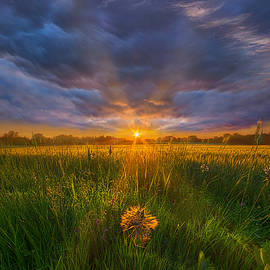 Phil Koch - Don
