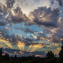 Angie Vogel - Dramatic Skies