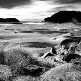 Lauren Leigh Hunter Fine Art Photography - Dunes