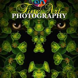 Mike Nellums - Eye on Fine Art Photography Magazine cover