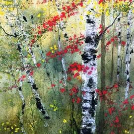 Diane Splinter - Fall Birches