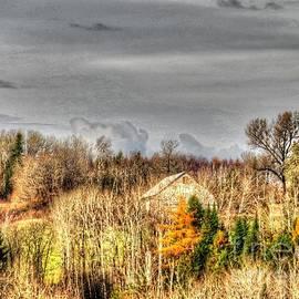 Brenda Ketch - Fall view
