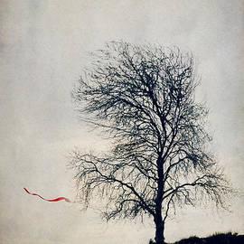 Svetlana Sewell - Farewell