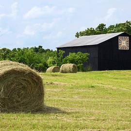 Sally Weigand - Farm Scene