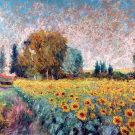 Pierre VALLON - Field Of Sunflowers