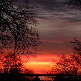 Susan Ince - Flaming Sunset