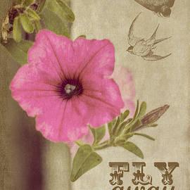 Cathy Kovarik - Fly Away