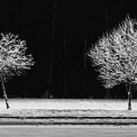 Frost Line - Ed Boudreau