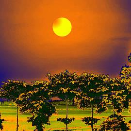Bliss Of Art - Full Moon Night