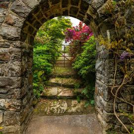 Adrian Evans - Garden Arch
