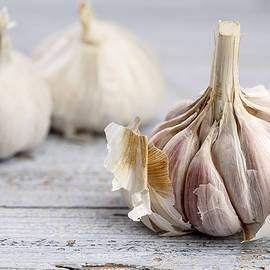 Garlic - Nailia Schwarz