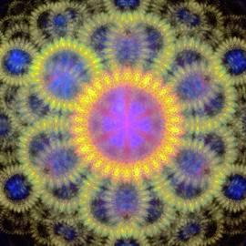 Lilia D - Glowing fractal flower