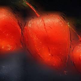 Gabriella Weninger - David - Glowing Orange