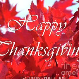Gardening Perfection - Happy Thanksgiving