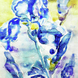 Jasna Dragun - Irises