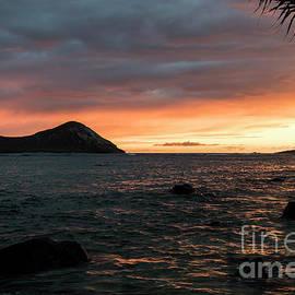 Mitch Shindelbower - Island Sunrise