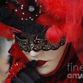 Wilko Van de Kamp - Lady in Red