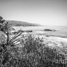 Laguna Beach California Black and White Picture - Paul Velgos