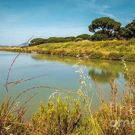 Carlos Caetano - Lake Landscape