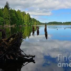 Elmar Langle - Lake Reflections