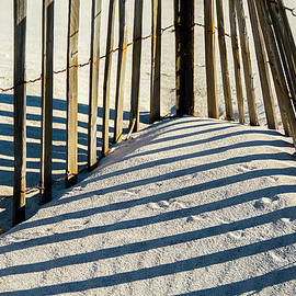 Cathy Kovarik - Lines In The Sand